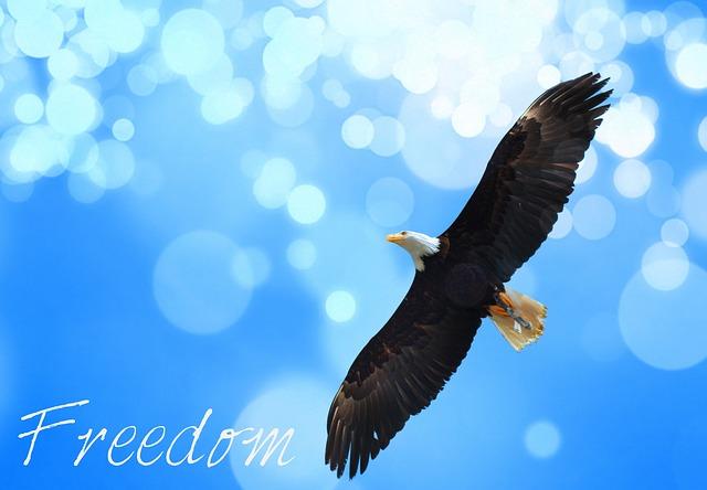 freedom-945300_640