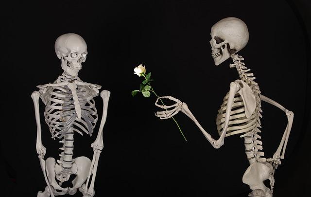 skeletal-601213_640