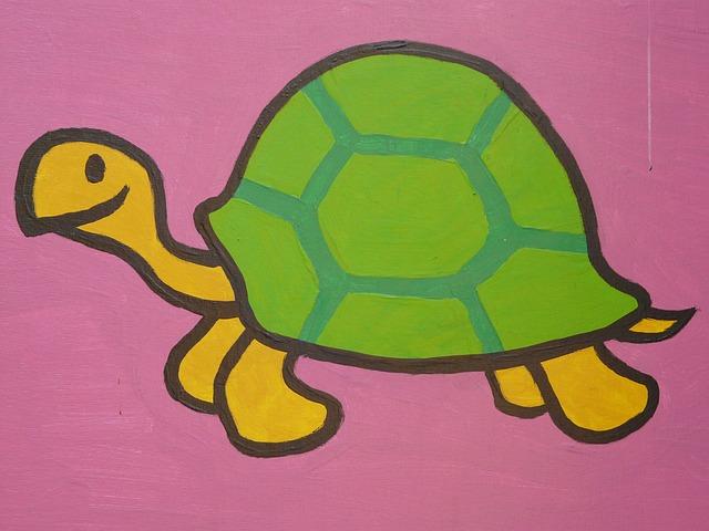 turtle-6099_640