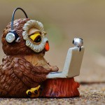 owl-947741_640