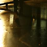 <7/29・東京> 『異才、発見!―枠を飛び出す子どもたち』著者伊藤史織 × 吉田晃子 +「異才発掘プロジェクト ROCKET」第1期スカラー濱口瑛士 + 星山海琳トークライブ・写真展のお知らせ