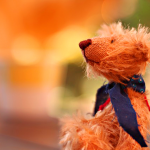 bear-2972159_640
