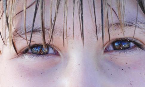 brown-eyes-775105_640