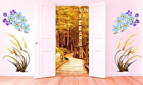 open-door-3084200_640