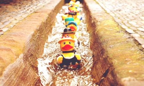 rubber-duck-1401225_640